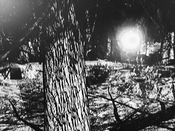 First ever 'photos of Britain's biggest UFO sighting show huge orb flying through woods with beam of light shooting out'
