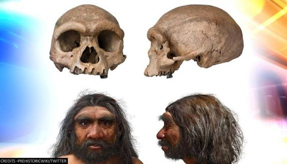 'Dragon Man': Discovery Of 'new Human Species' Forces Scientists To Rethink Evolution